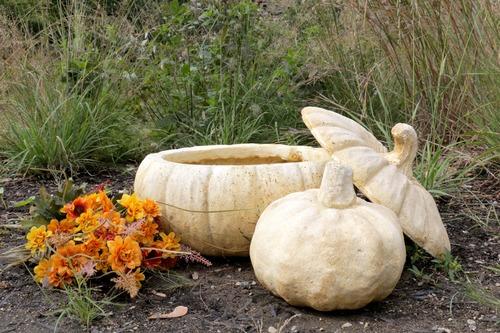 Wide Pumpkin Planter