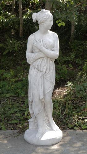 Shy Venus   46 H