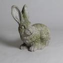 Heinrich Hare 18  Lg