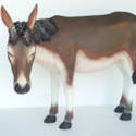 Donkey Mule Jackass 40