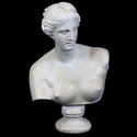 Venus De Milo Bust Medium 21