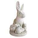 Rabbit and Bunnies