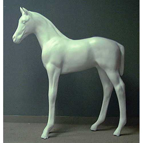 Standing Colt (Horse) 48