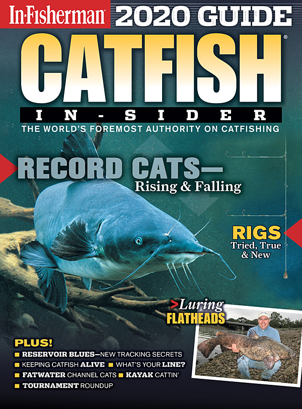 2020 Catfish In-Sider Guide