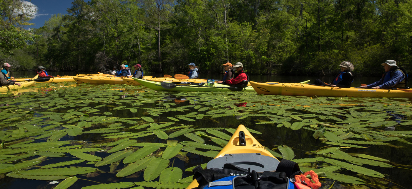 A single kayak trip may be enough to give a young person an indelible taste of the beauty of the natural world, and new trail systems, paddling docks, and visitor centers are the way to encourage an even deeper and more lasting attachment.