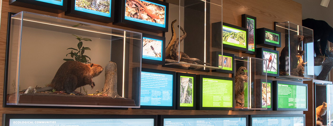 Developed by OSI, the exhibits describe rock formations and forests filled with wildlife and rare plants, including dwarf pitch pine.