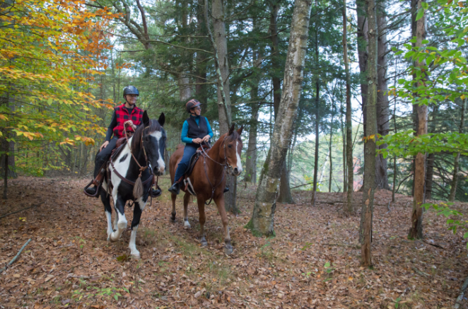 The protection of the Smith Farm property will also help to supplement high demand for equestrian resources in the region.