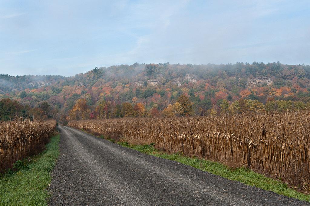Wallkill Rail Trail and Farms