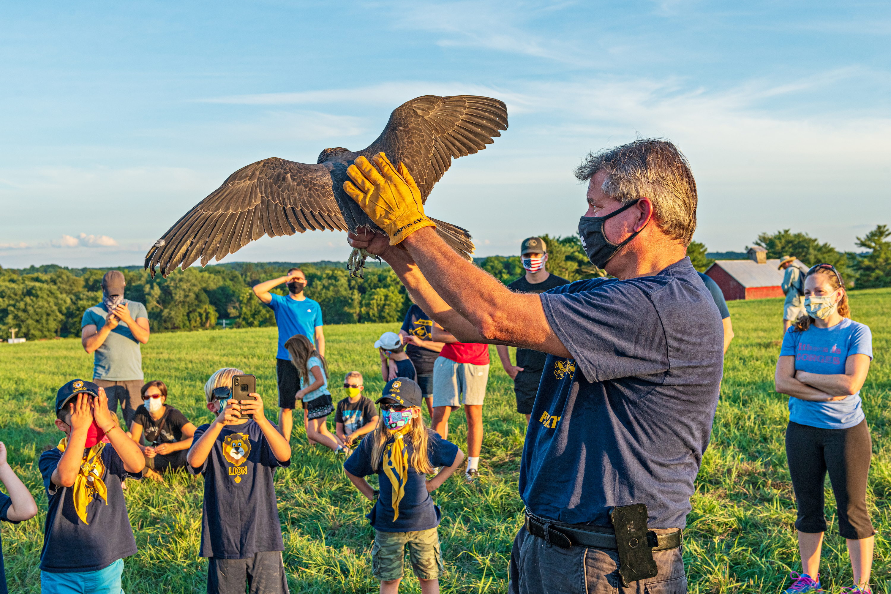 This year, OSI's River-to-Ridge Trail hosted the release of five rehabilitated peregrine falcons.
