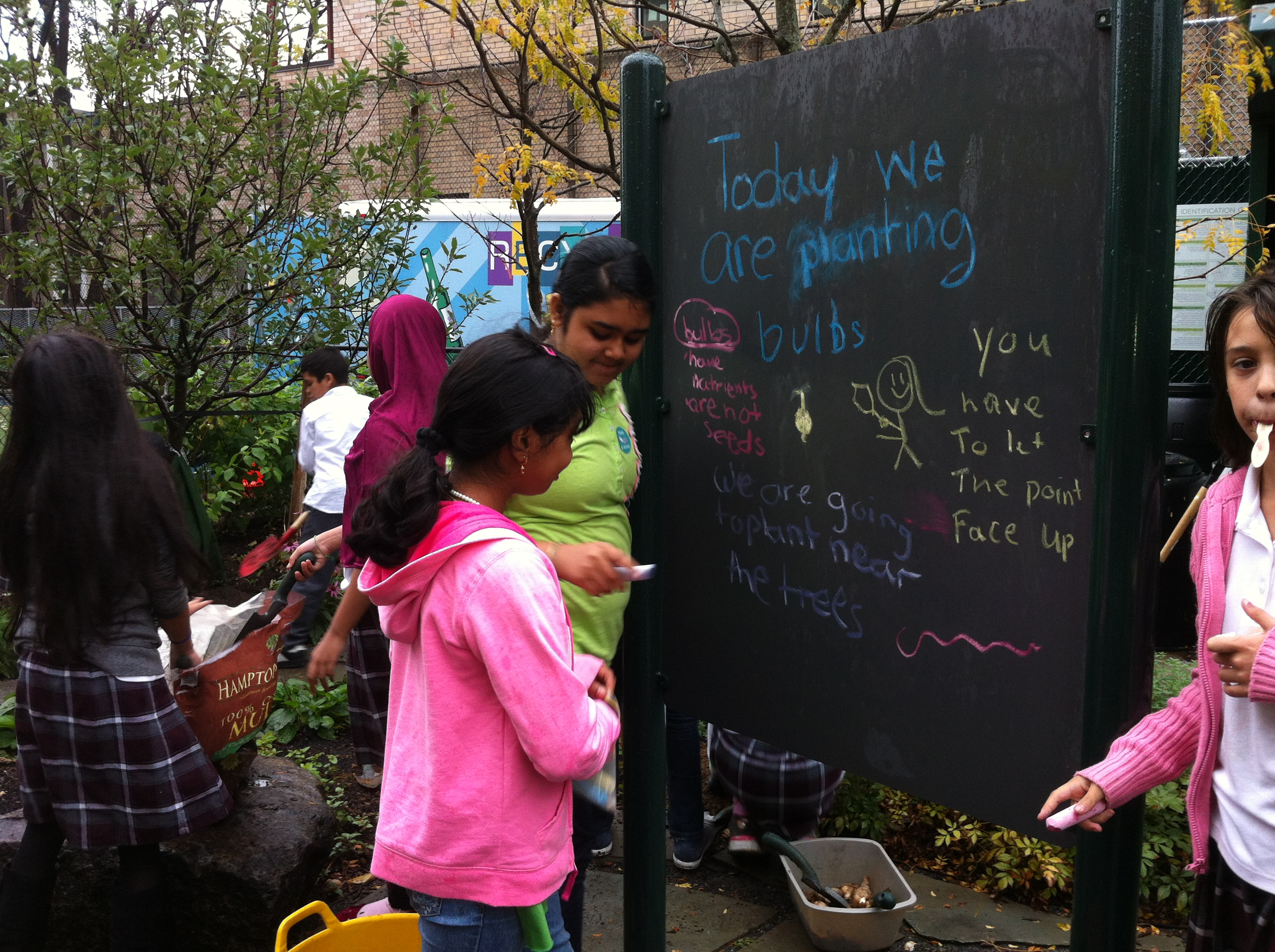 Students in Grounded Knowledge work with community members to turn available empty lots into viable, productive urban green spaces. Now alumni of OSI's Citizen Action program, the group gained valuable operating support, allowing it to double down on its mission.