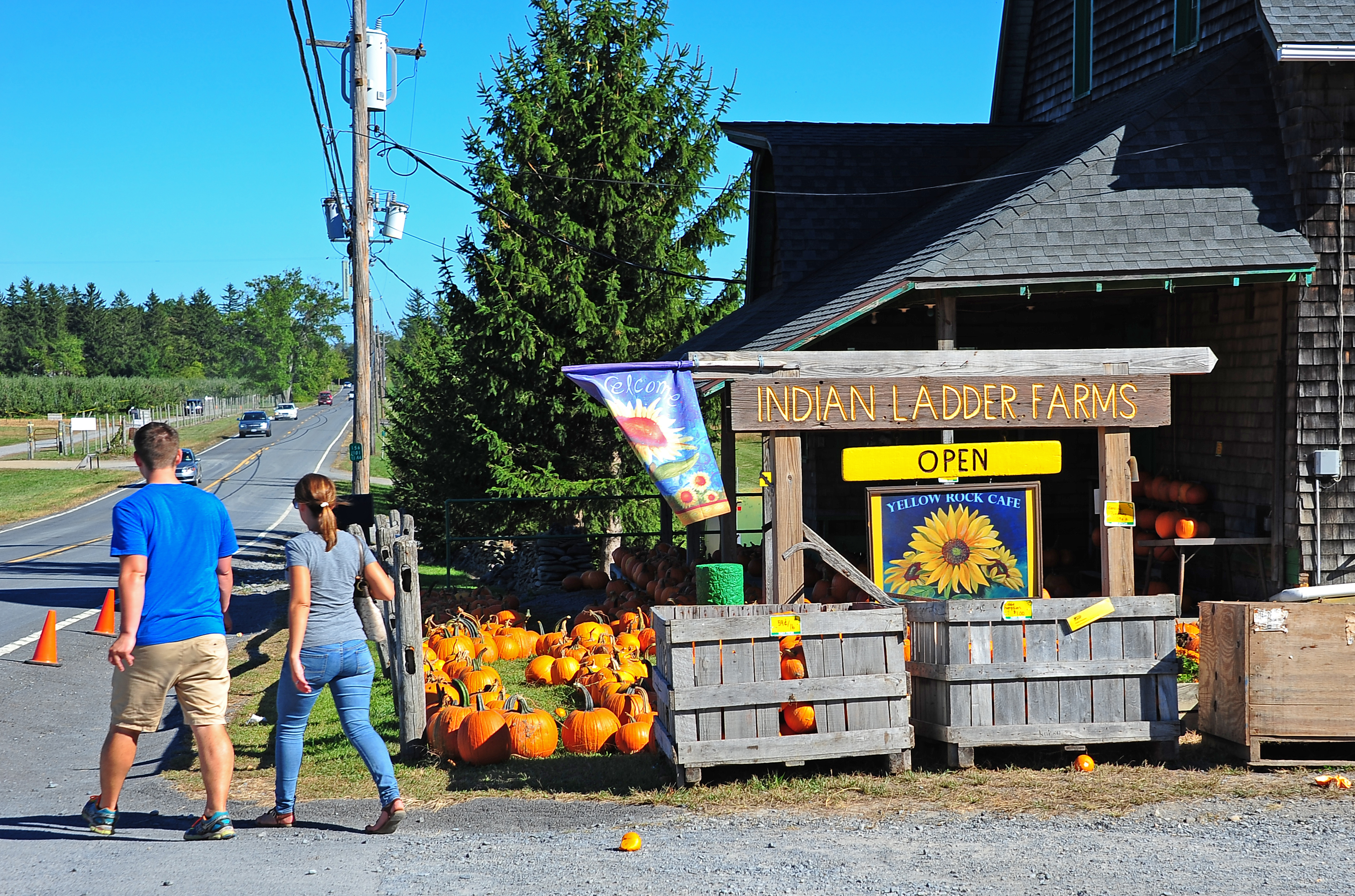 Once a farm for dairy cows, Indian Ladder today offers a farm store, hay rides, the Yellow Rock Café restaurant, a baby animal petting farm, the Barn School summer camp, a wedding locale for rent, and the Helderberg Farmer's Market.