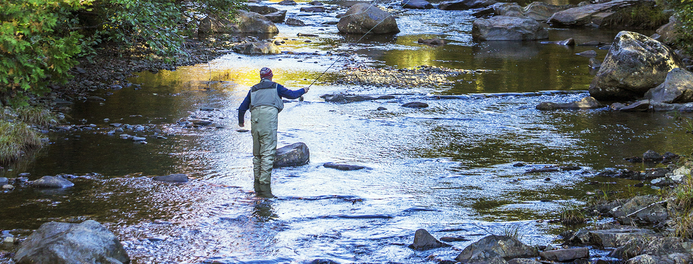 An OSI Transborder grant helped preserve Orbeton Stream, prized for its eastern brook trout and Atlantic salmon: in 2007 salmon reared in the Orbeton watershed returned from the North Atlantic Ocean for the first time in 150 years. These wildlife resources are now forever conserved by the Trust for Public Land and rhe State of Maine.