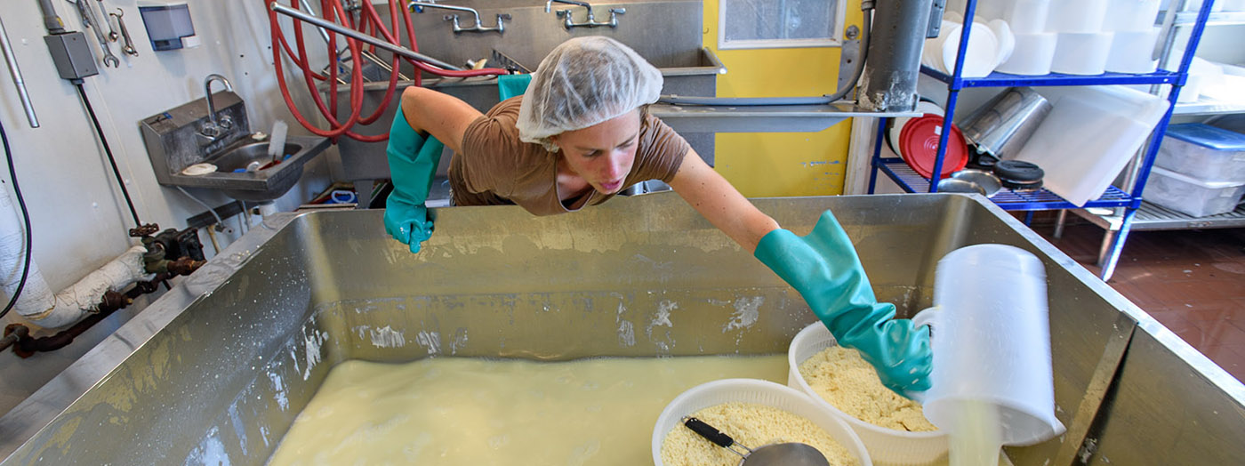 Farmer Ashlee Kleinhammer runs North Country Creamery, a small dairy with a cheese plant, cheese cave and retail store at Clover Mead Farm. She carries on the legacy of her heritage farm by recreating the signature cheeses popular decades earlier.