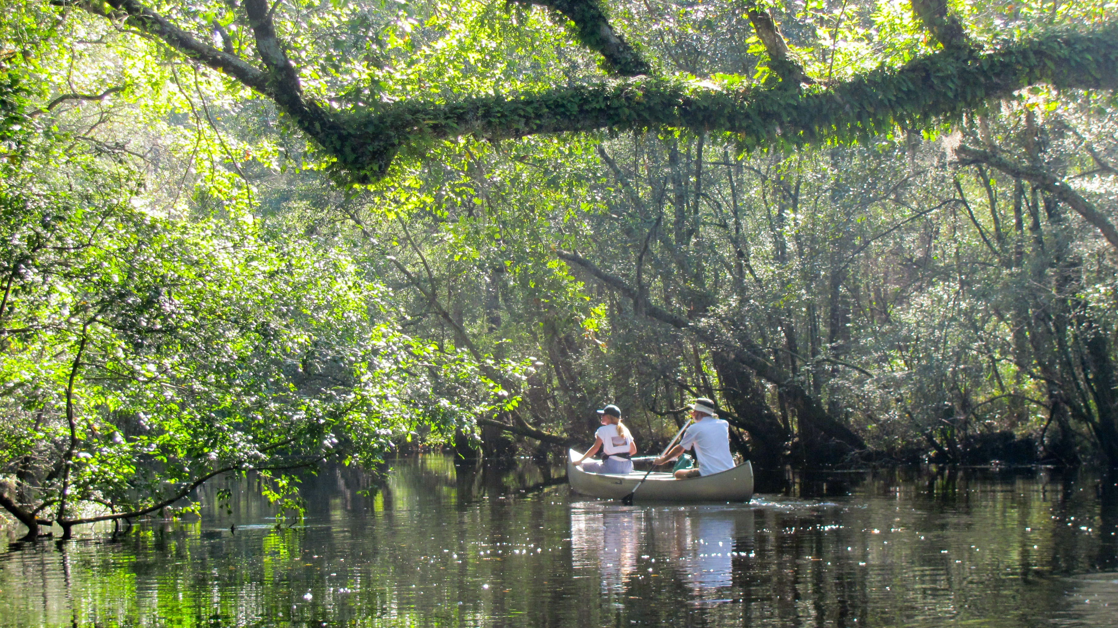 Paddlers enjoy the Waccamaw River.