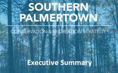 Palmertown Ranger Master Plan- Executive Summary