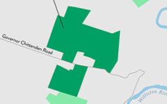 Catamount Community Forest