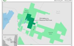 OSI Addition to Bluestone Wild Forest