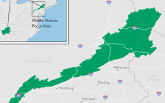 Middle Atlantic Focus Area of the Appalachian Landscapes Protection Fund