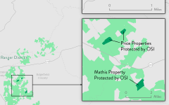 Gilchrist, Price and Mathis Properties