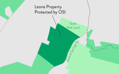 Leone Property Protected by OSI