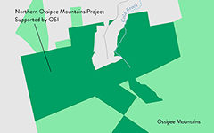 Northern Ossipee Mountains Project Supported by OSI
