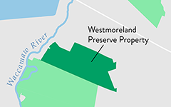 Conserving the Westmoreland Preserve Property