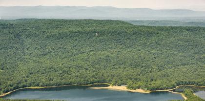 Palmertown Range