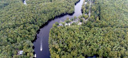 Waccamaw River near Conway, SC