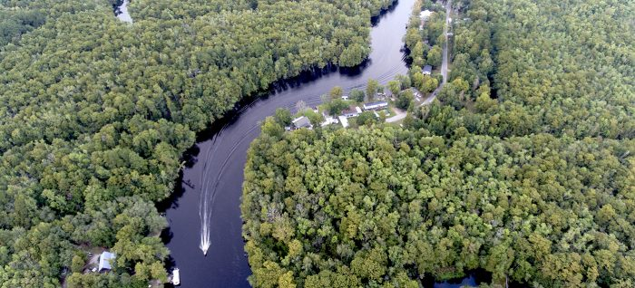 Waccamaw River near Conway, SC