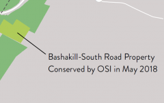 OSI Protects the Bashakill-South Road Property
