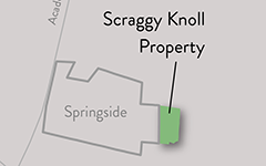 Springside Scraggy Knoll Property