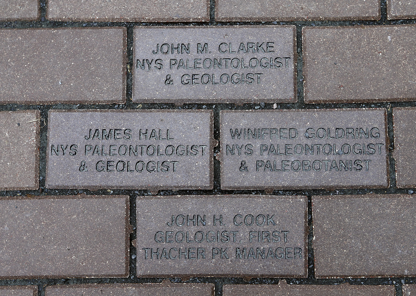 Engraved pavers that were sponsored from Thacher Park Center's fire pit patio.