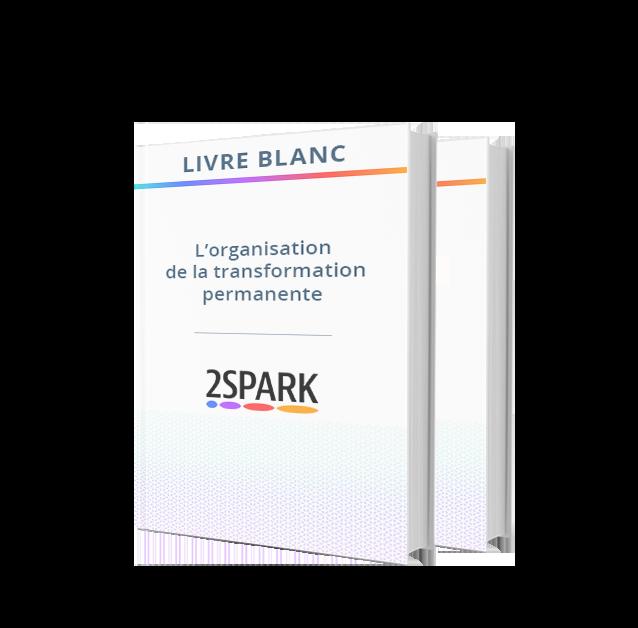 livre_blanc_organisation_transformation_permanente