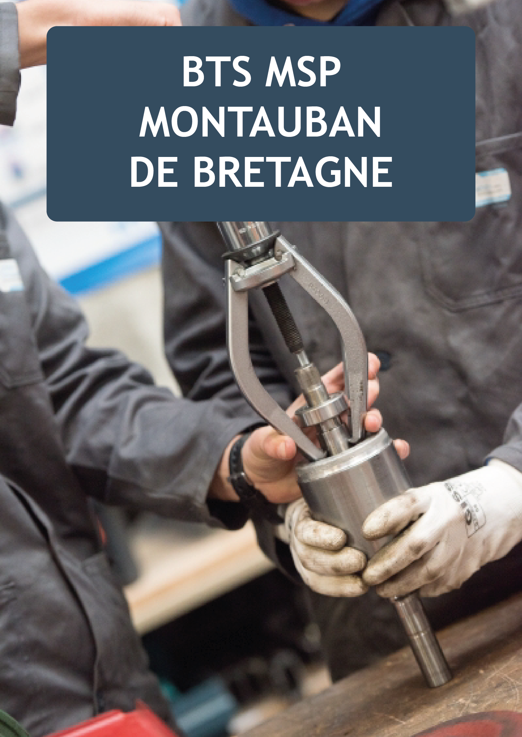 Plaquette BTS MSP Montauban de Bretagne