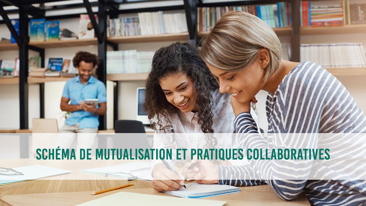 Schéma de mutualisation et pratiques collaboratives dans le cadre de la transformation numérique dans le secteur public
