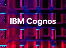 Formation LePont IBM Cognos