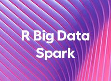 Formation LePont R Big Data Spark