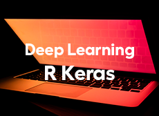 Formation LePont Deep Learning R Keras