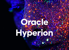 Formation LePont Oracle Hyperion Essbase