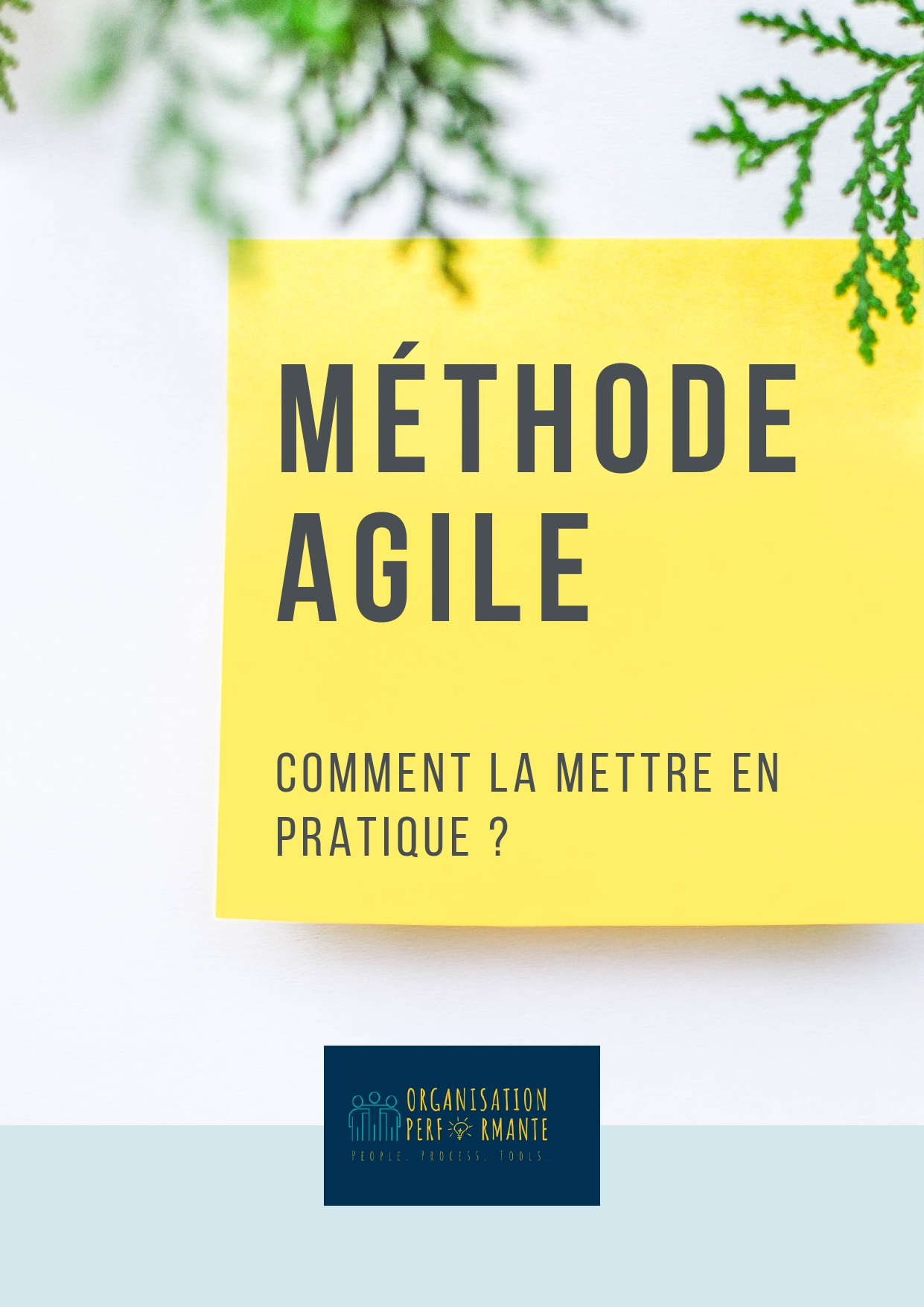 livre blanc mise en pratique méthode agile