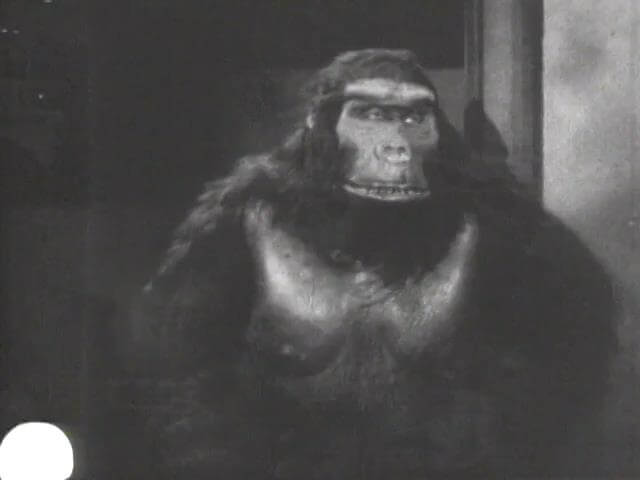 The Ape Man 8