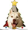 Dief's head inside a Christmas tree