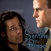 Sentinel Bingo