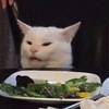 the popular meme of the cat with a disgruntled expression staring at a plate of salad.