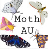 Moths Based on the Characters