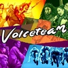 Voiceteam logo with shaped of a hat superimposed on it