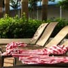 Deck chairs with striped towels strewn in them, in dappled tropical sunlight.