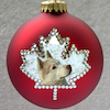 A christmas tree ornament with Dief's head in a maple leaf