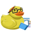 Ducky with books