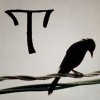T and a bird on a wire